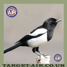 Animal Magpie Full Colour - Airsoft BB Gun Shooting Targets